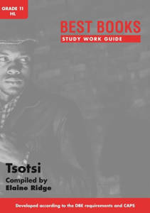 Picture of Bestbooks Studiewerkgids - Tsotsi Graad 11