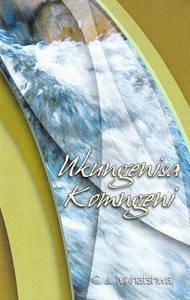 Picture of Ukungenisa Komngeni -  C. J. Mkhatswa