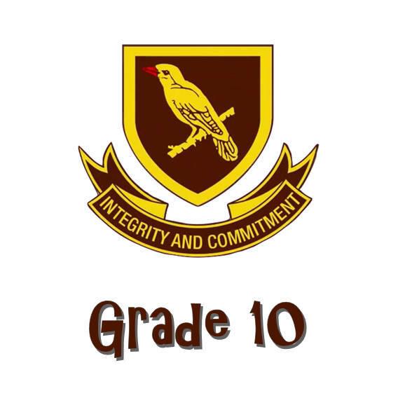 Randpark Grade 10