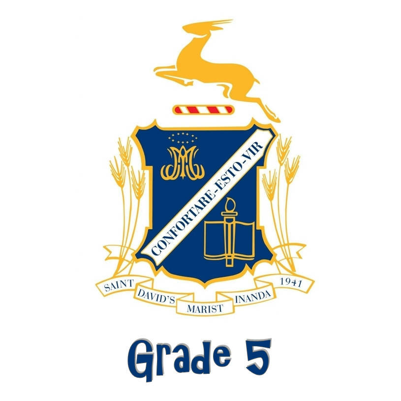 St David's Grade 5