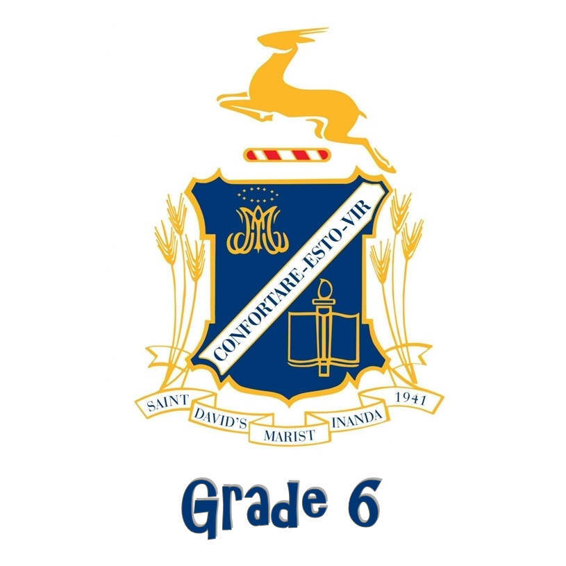 St David's Grade 6