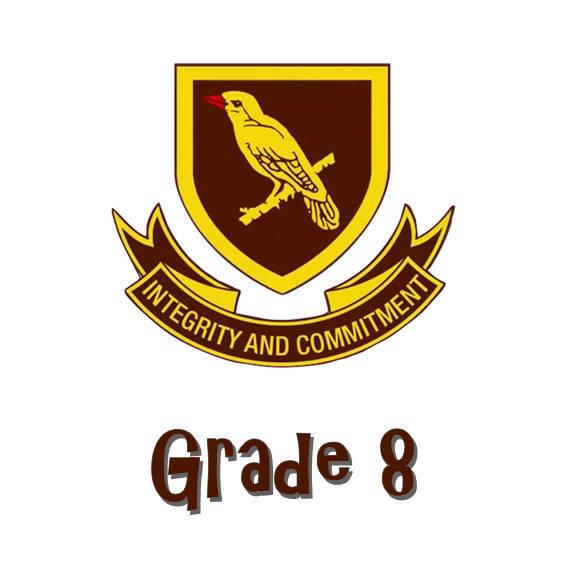 Randpark Grade 8