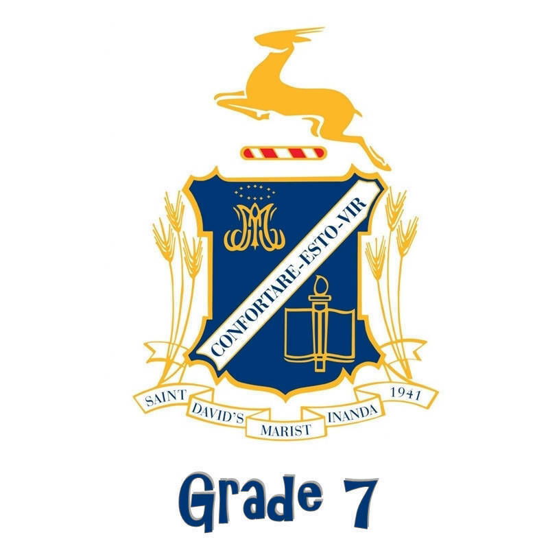 St David's Grade 7